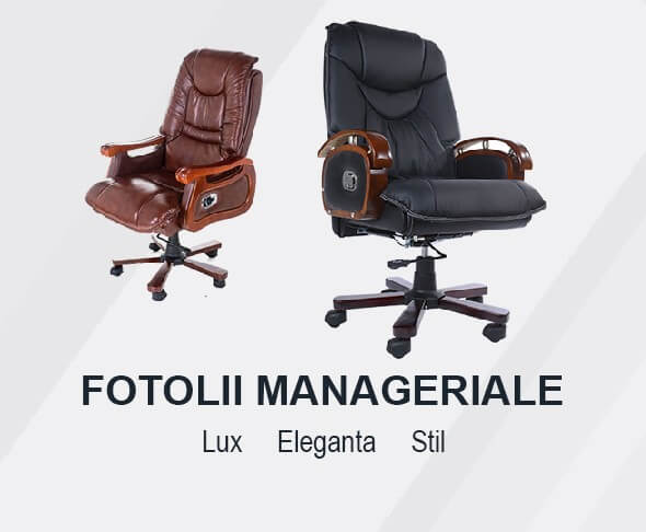 Fotolii Manageriale